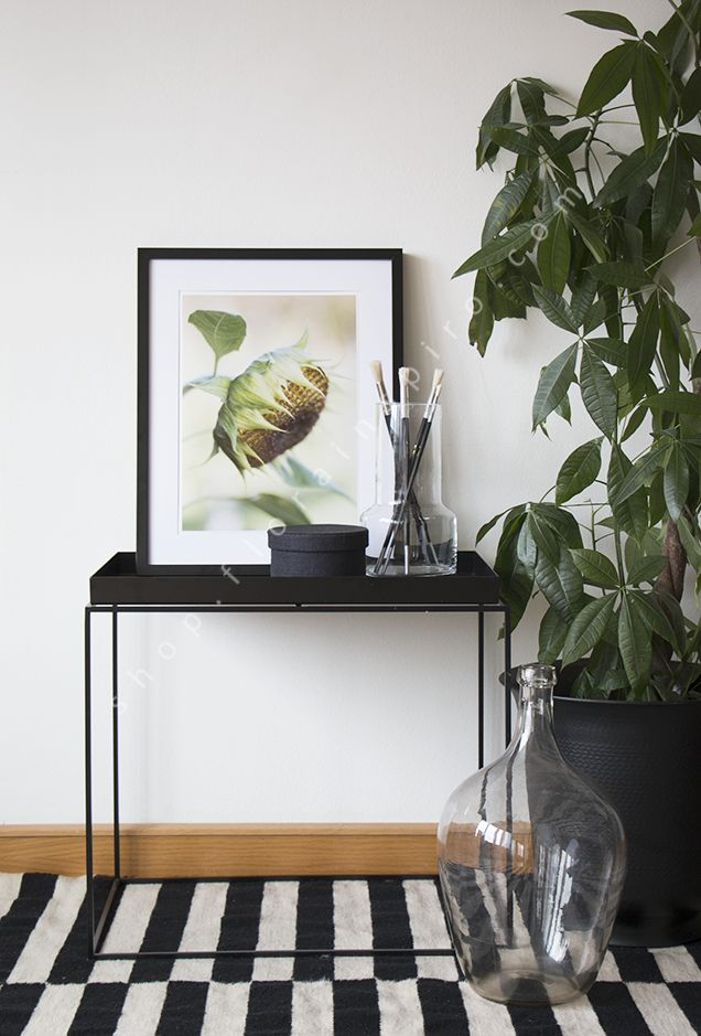 Seed head fine art photo print from http://shop.florainspiro.com Photography by Emelie Ekborg