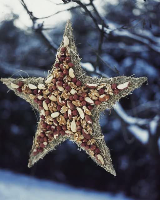 Nut Star for the Birds - http://www.sweetpaulmag.com/crafts/nut-star-for-the-birds #sweetpaul