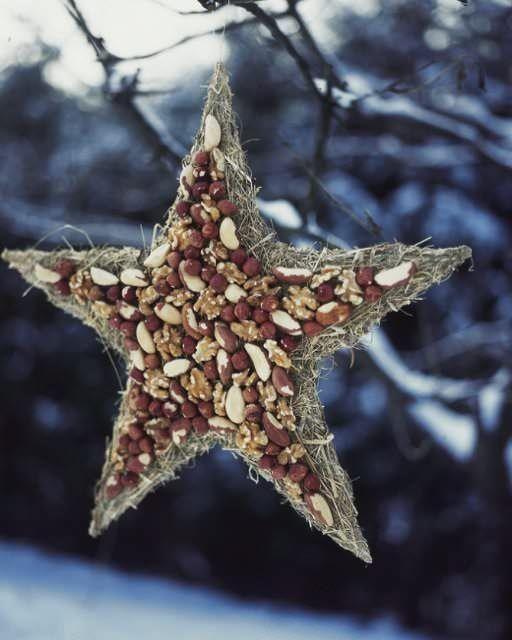 Nut Star for the Birds - http://www.sweetpaulmag.com/crafts/nut-star-for-the-birds #sweetpaul