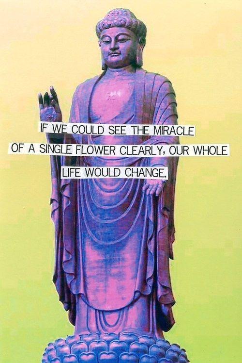 Buddha Quotes Tumblr Mesmerizing 26 Best Buddha Images On Pinterest  Buddha Quote Buddhism And