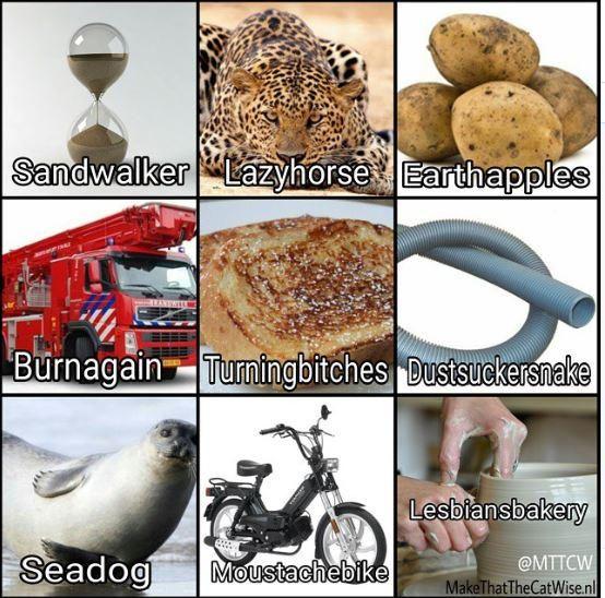 9 #Dunglish words :) #vertalen https://instagram.com/makethatthecatwise…