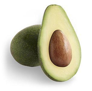 Zutano | Avocado Varieties | California Avocado Commission