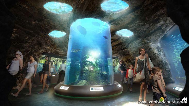 A biodómba tervezett Pannon-tenger akvárium részlete (látványterv)