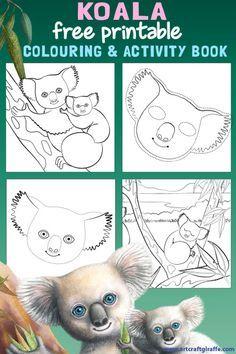 koala lou and toy - Google Search