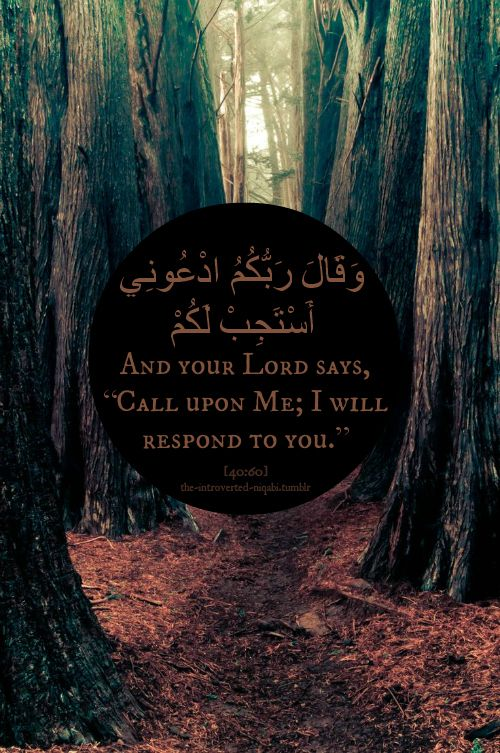"and your Lord says, ""call upon Me; I will respond to you."" #quran #ayah #islam"