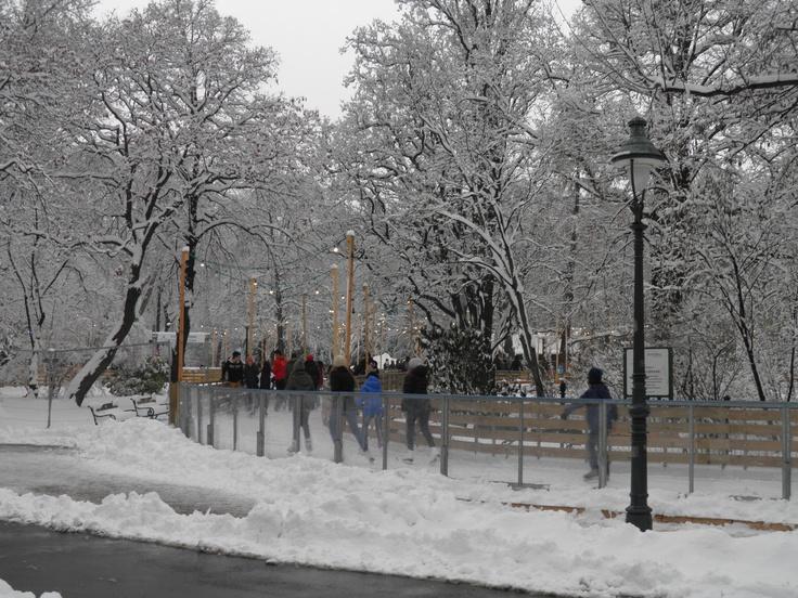 Ice skating in Rathauspark - Vienna