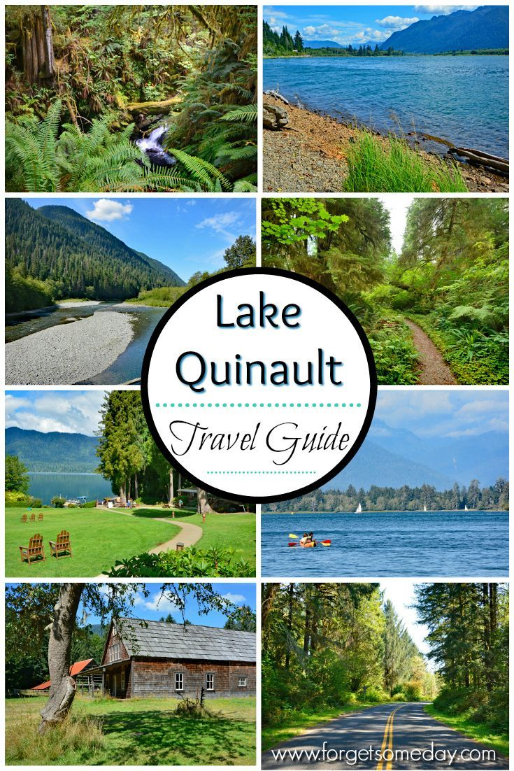 Lake Quinault And Quinault Rain Forest Olympic Peninsula Usa