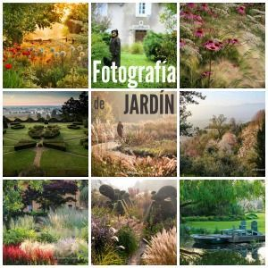 Jardines para soñar. Fotografías premiadas en IGPOTY N.9: Beautiful Gardens | El Blog de La Tabla