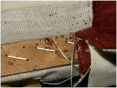 Affordable Bed Bug Exterminators offers chemical and heat bed bug treatment to eliminate in infestation.