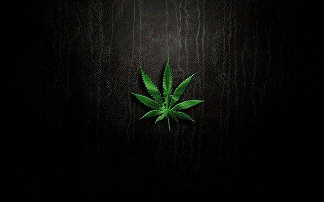 Erst Berlin, jetzt Düsseldorf: Wird Cannabis bald auf den Tagesplan weiterer Städte Deutschlands kommen? Als zweite Stadt will Düsseldorf den Verkauf von Cannabis legalisieren. Die Stadtverwaltung …