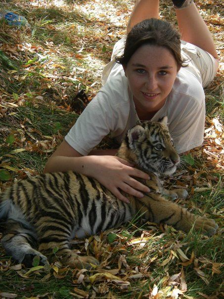 Endangered Tigers in China