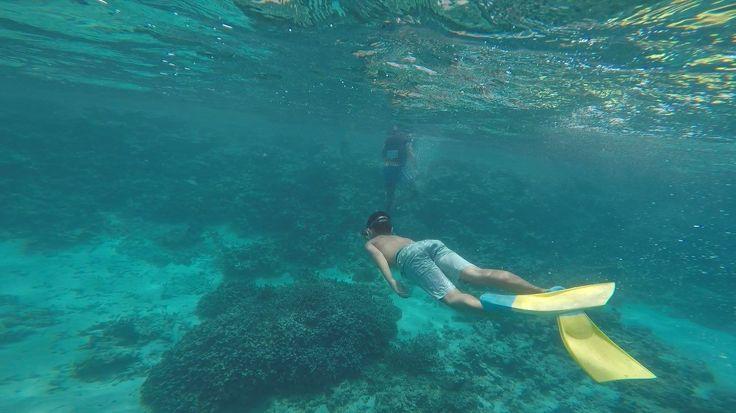 Swimming around our reef Return to Paradise Beach Resort, SAMOA