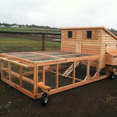 Chicken coop plans for 12 chickens woodworking projects for Moving chicken coop plans