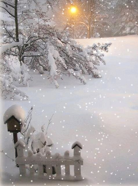 animated image (snowing)