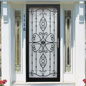 16 best images about window door security screens on for Decorative storm doors with screens