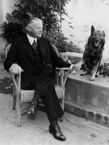 I've been looking for a photo of President Hoover and his Norwegian Elkhound, Weejie, and I FINALLY found one AND a copy of it can be ordered!