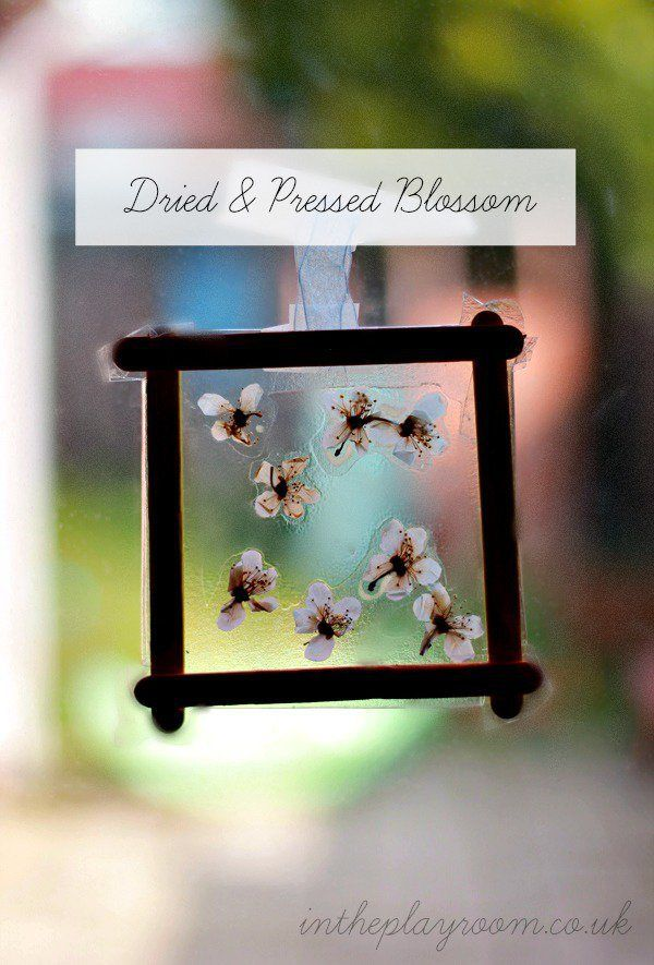dried pressed blossom window decoration