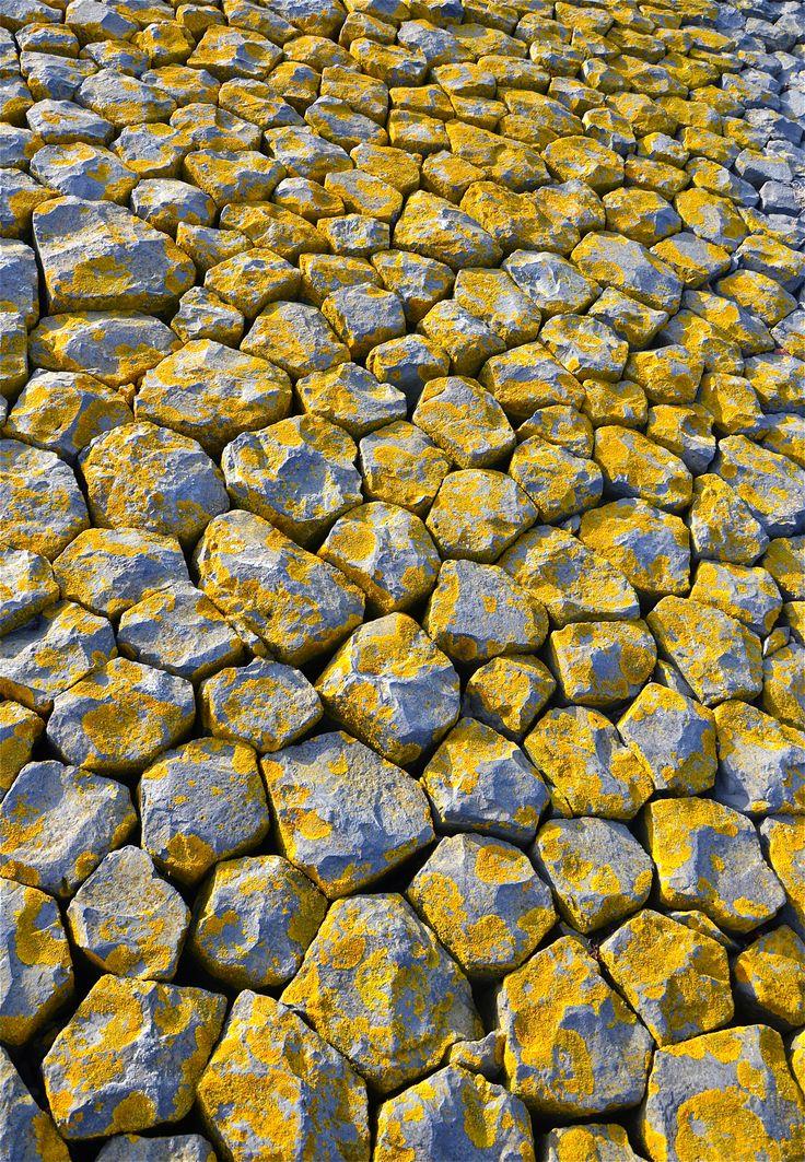 Rock | Pebble | Stone | 岩 | 石 | Pierre | камень | Pietra | Piedra | Color | Texture | Pattern | dike stones with lichen