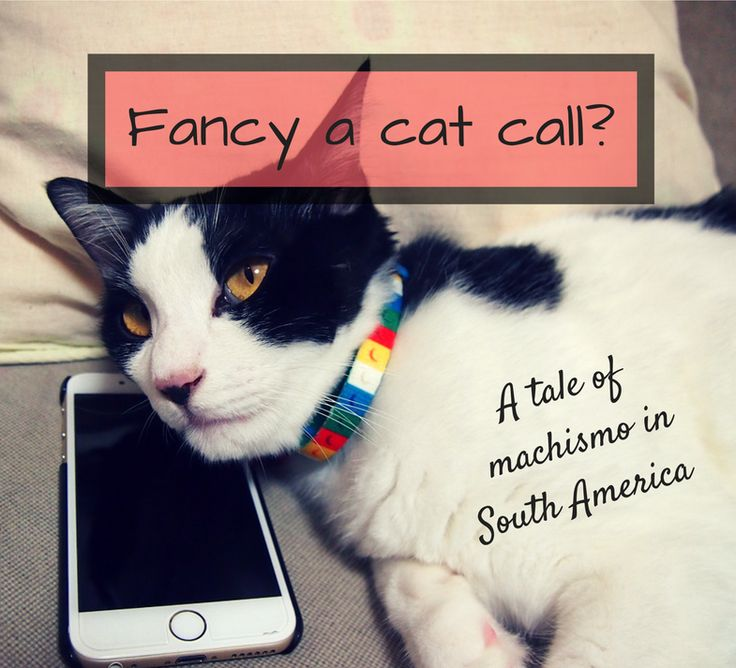 Have you ever been cat called or sexually harassed in Latin America? Read about my experiences with the machismo culture here and share your own!
