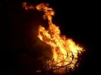 Die Tannenbäumen brennen.