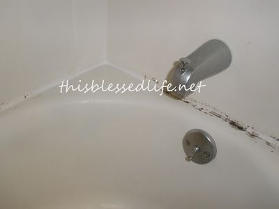 how to get mold out of shower grout