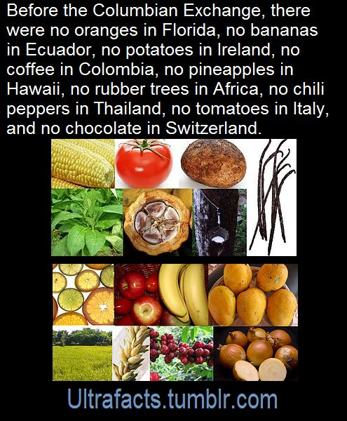 The Columbian Exchange or Grand Exchange was the widespread transfer of animals, plants, culture, human populations, technology and ideas between the American and Afro-Eurasian hemispheres in the 15th and 16th centuries, related to European colonization and trade after Christopher Columbus' 1492 voyage. SourceFollow Ultrafacts for more facts
