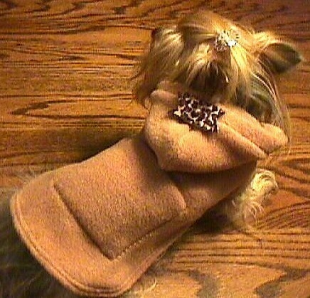 CAMEL HOODIE w/LEOPARD Bow, Pocket Dog Coat Jacket xxxs-xxs-xs-s-m. $38.00, via Etsy.