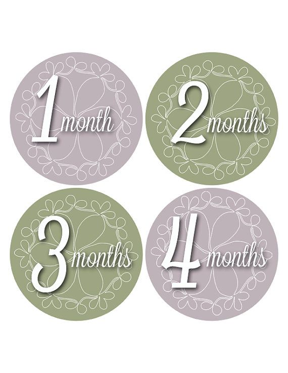Monthly Baby Stickers Lavender and Green by MoonLitPrintables