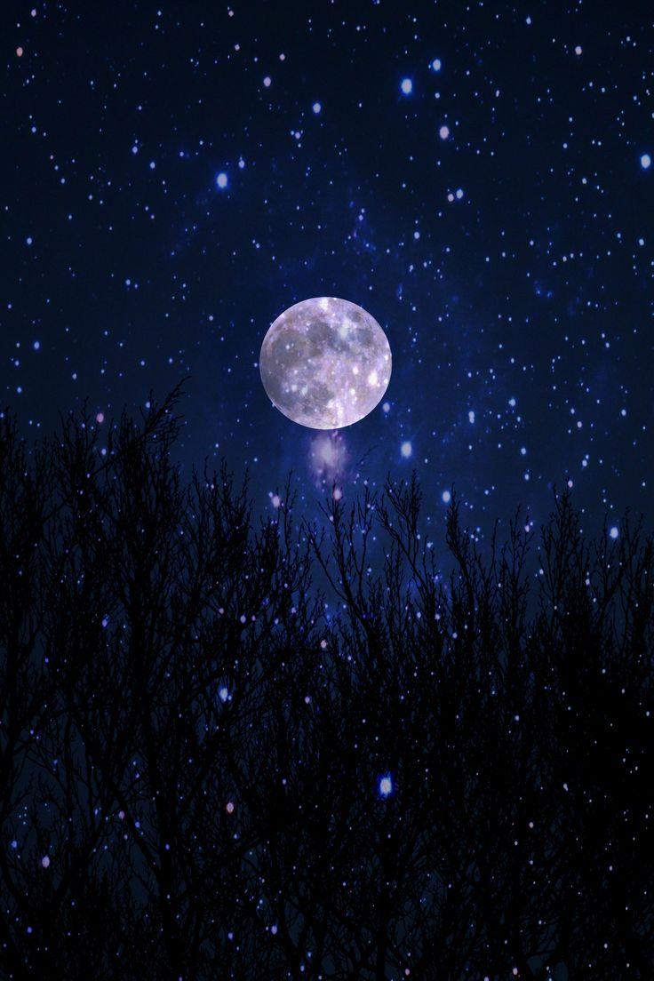 moon and stars - 736×1104