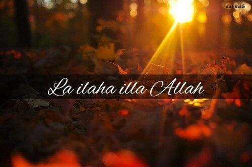 La ilaha illa Allah ♥ auf We Heart It - http://weheartit.com/entry/87556502