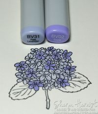 A fantastic step-by-step tutorial on how to color a hydrangea