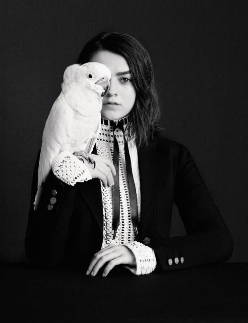 Les Beehive - Maisie Williams by Ben Toms for DAZED,...