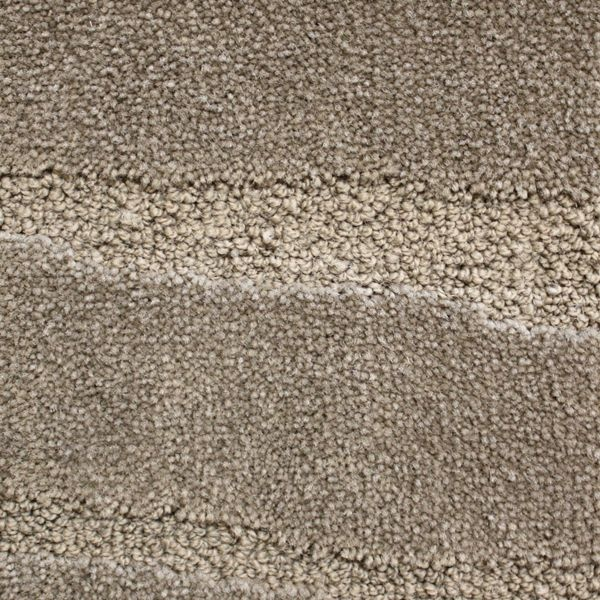 Mink Future Life House Ideas Carpets Room Floors Final