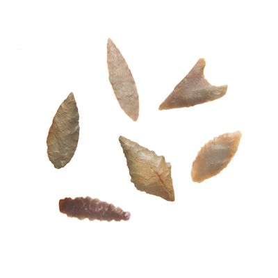 Neolithic Stone Points from Evolution Soho