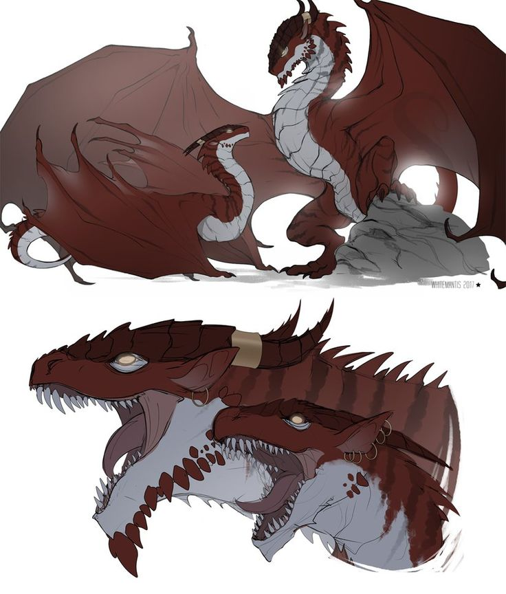 Best 25+ Ice dragon ideas on Pinterest | Dragons, Blue dragon and ...