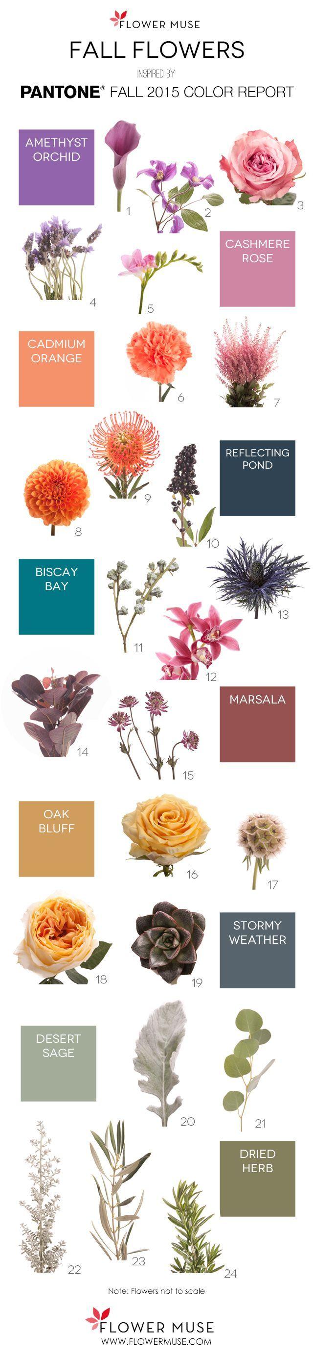 best flower name images on pinterest