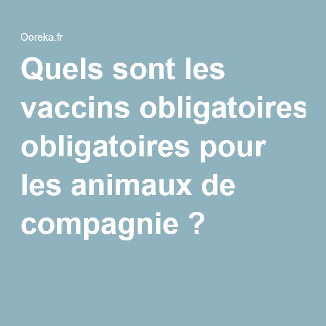 Quels sont les vaccins obligatoires pour les animaux de compagnie?