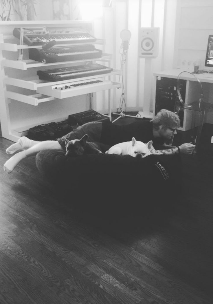 Ed with dogs is just as cute as Ed with kitties
