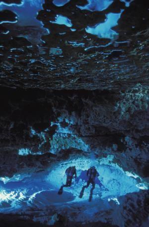 Cave divers Wakulla Springs, FL