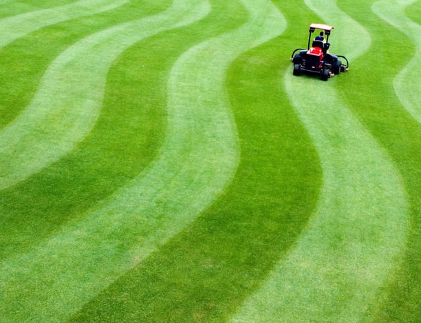 Keith Siler in UNCG Sports Turf created this mowing masterpiece on the baseball stadium turf