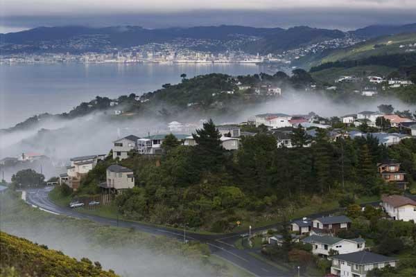 A love letter to Wellington, New Zealand <3