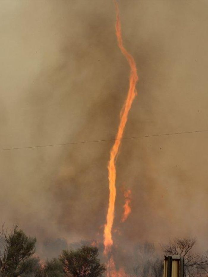 The Best Fire Tornado Ideas On Pinterest Tornadoes Storms - This slow motion fire tornado is the coolest thing youll see all day