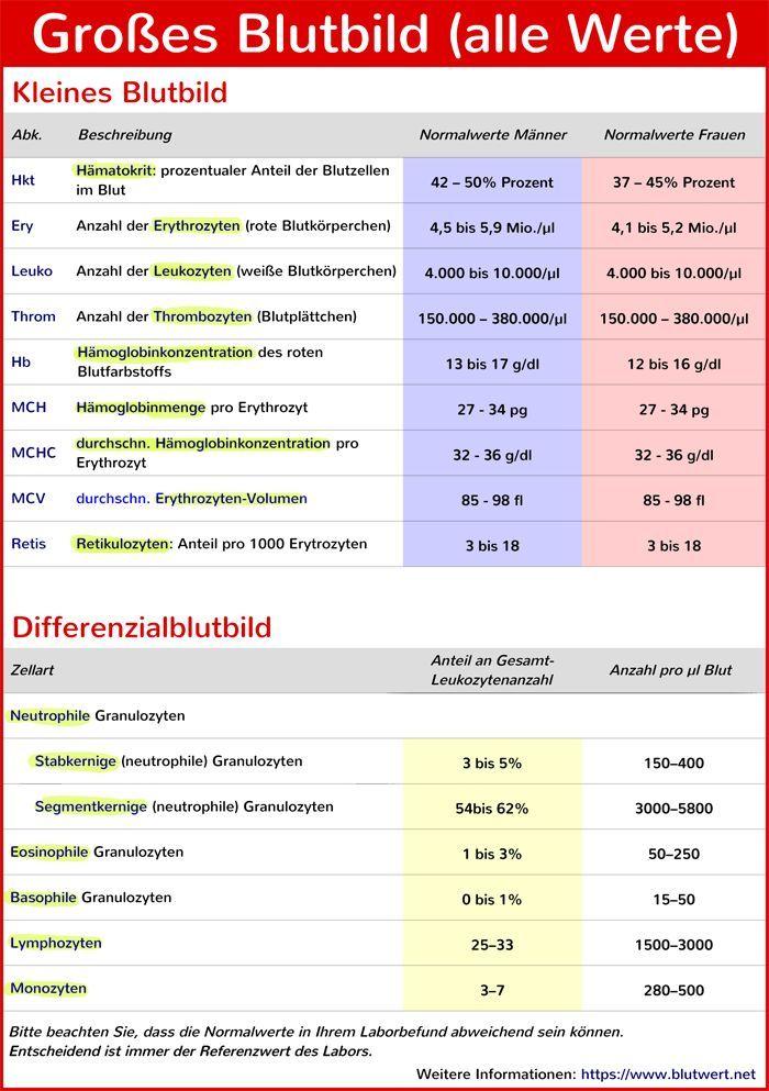 Abkürzungen Blutwerte Tabelle