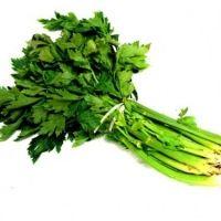 The Benefits Of Celery