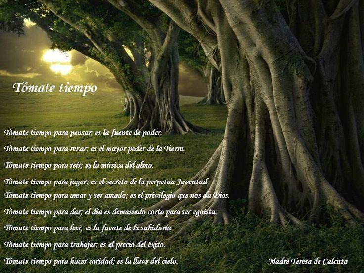 Frases De Teresa De Calcuta Sobre La Vida