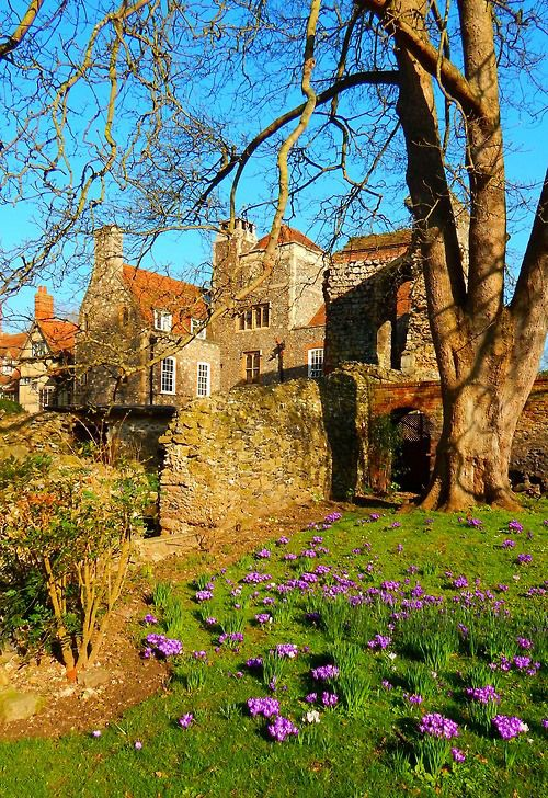 Spring, Canterbury, England