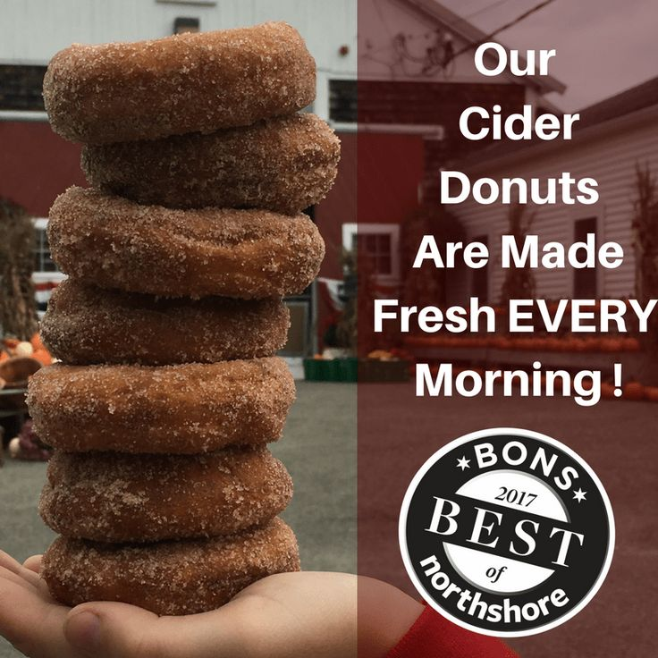 Cider Hill Farm - In Amesbury, MA | The Best Pick Your Own Farm & Cider Donut Bakery! Farm To Table, PYO Fruit, GMO-Free, Family Friendly, Seasonal Festivals. Come Visit Us Today!