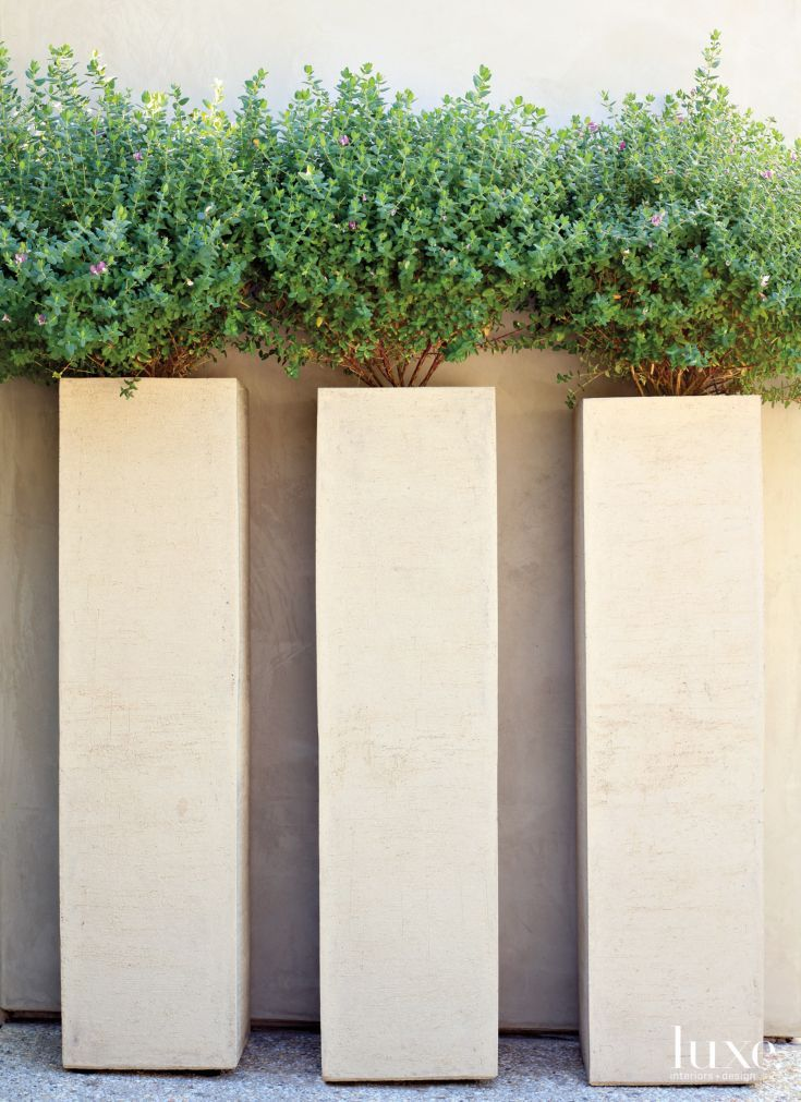 Contemporary Neutral Exterior Wall with Sculptural Planters
