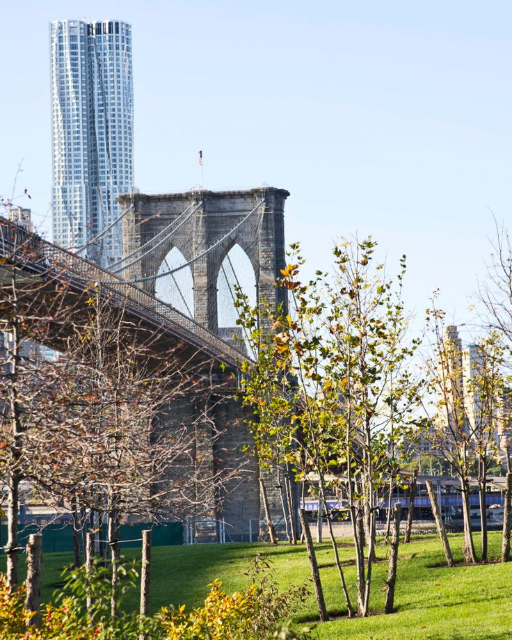 Brooklyn Bridge - NYC, New York, parc, bâtiment, arbres, ensoleillé, couleur, ciel bleu, architecture by kpicts on Etsy