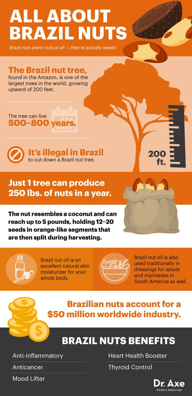 All about Brazil nuts - Dr. Axe http://www.draxe.com #health #holistic #natural